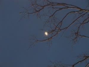 Missouri Moon on a Blue Night